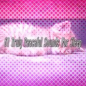 61 Truly Peaceful Sounds For Sleep by Soothing White Noise for Relaxation