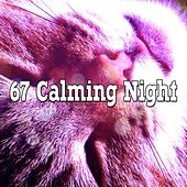 67 Calming Night de Water Sound Natural White Noise