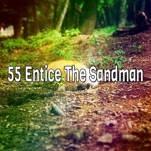 55 Entice The Sandman by White Noise for Babies