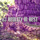 63 Reality In Rest de Ocean Sounds Collection (1)