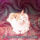 50 Spa Ambience For Calm de White Noise Babies