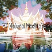 77 Natural Meditation by Yoga Music