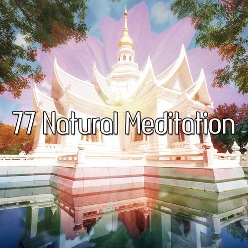 77 Natural Meditation von Yoga Music