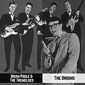The Origins by Brian Poole and the Tremeloes