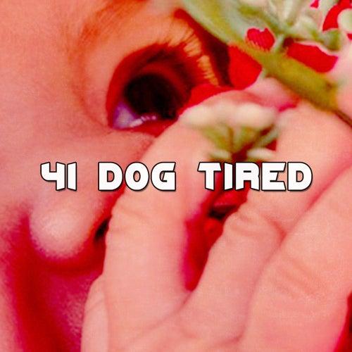 41 Dog Tired de Dormir