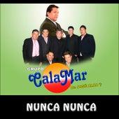 Nunca Nunca de Grupo Calamar De Jose Alba