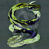 Snake Dance by The Makers