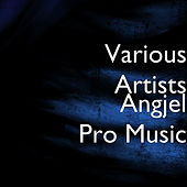Angjel Pro Music by Various Artists