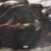 You Just Don't Know (feat. DeLorean & Lenora) by DJ Hawk