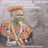 Education, Key to Success von Afo-Akom