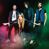 Fraction von Spiders
