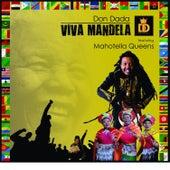 Viva Mandela by Dondada