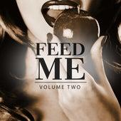 Feed Me, Vol. 2 (The Fresh Taste Of Modern Big Room Bangers) von Various Artists