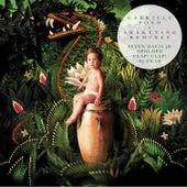 Awakening Remixes von Gabriele Poso
