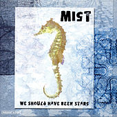 We Should Have Been Stars by Mist