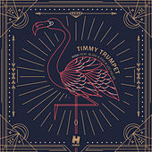 High by Timmy Trumpet