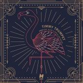 High de Timmy Trumpet