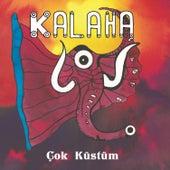 Çok Küstüm by Kalaha