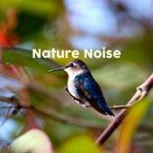 Nature Noise de Nature Sounds Nature Music (1)