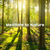 Meditate to Nature by Nature Sounds (1)