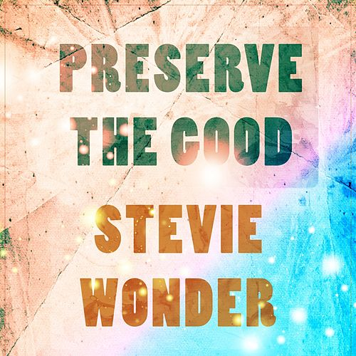 Preserve The Good von Stevie Wonder