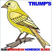 Trump's Subterranean Homesick Blues by Various Artists
