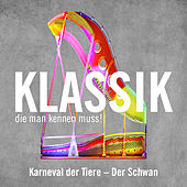Der Schwan aus Karneval der Tiere (The Swan from Carnival of the Animals) von Ross Pople