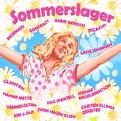 Sommerslager de Various Artists