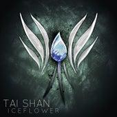 Iceflower by Taishan