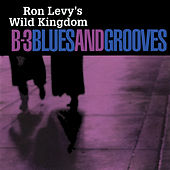 B-3 Blues And Grooves von Ron Levy
