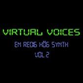 En Redig Hög Synth - Vol 2 von Virtual Voices