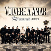 Volveré A Amar by Banda Guasaveña de Valentín Elizalde
