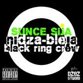 Sunce sija (feat. Black Ring Crew) von Nidza Bleja