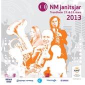 Nm Janitsjar 2013 - 1 Divisjon de Various Artists