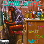 Call it What You Want (These Rappers) by Ernie Wayne
