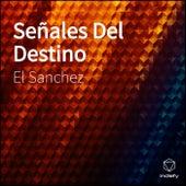 Señales Del Destino by Sanchez