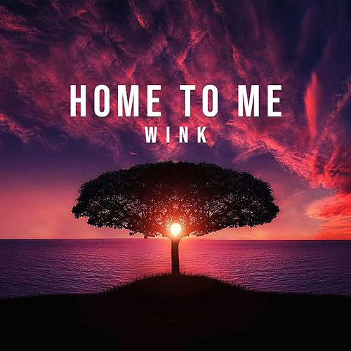 Home to Me by Wink