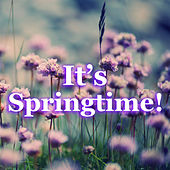It's Springtime! by Various Artists