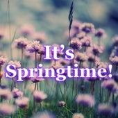 It's Springtime! von Various Artists