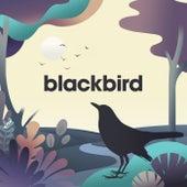 Blackbird - EP by Sleepyheadz