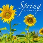 Spring Morning Music di Various Artists
