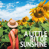 A Little Bit Of Sunshine by Various Artists