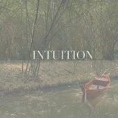 Intuition by Mae Ji-Yoon