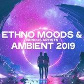 Ethno Moods & Ambient 2019 de Various Artists