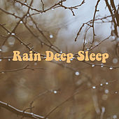 Rain Deep Sleep by Various Artists