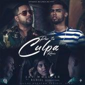 Por Tu Culpa (Remix) [feat. Rubiel International] de Jay Wheeler