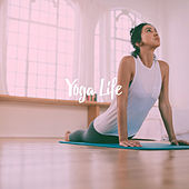 Yoga Life by Various Artists