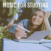 Music For Studying de Various Artists