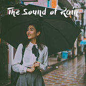 The Sound of Rain de Various Artists
