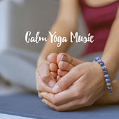 Calm Yoga Music by Various Artists